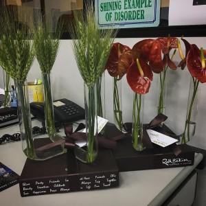 Ha flores por todos os lados h flores em tudohellip